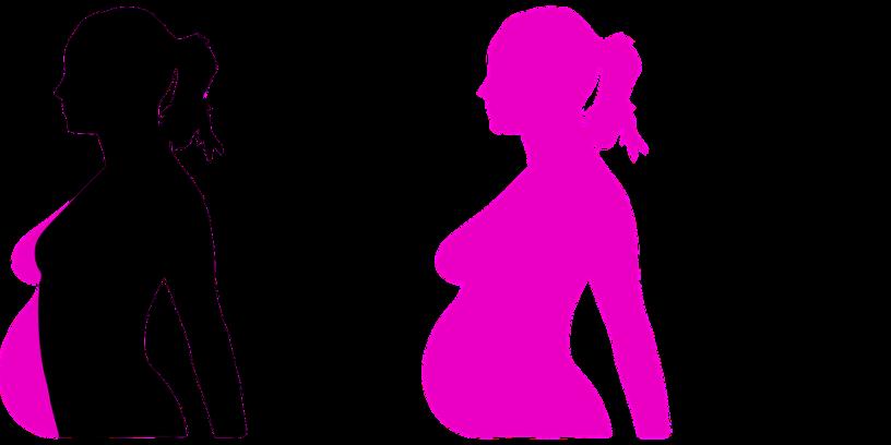 Favoriser l'ovulation